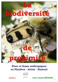 Flore_gourmande_cueillette_plantes_sauvages_comestibles_nord_france_belgique_repas_bio_nature_ecologie_couverture_pdf_BDP