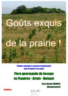 Flore_gourmande_cueillette_plantes_sauvages_comestibles_nord_france_belgique_repas_bio_nature_ecologie_couverture_pdf_GEDLP