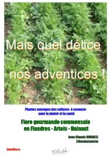 Flore_gourmande_cueillette_plantes_sauvages_comestibles_nord_france_belgique_repas_bio_nature_ecologie_couverture_pdf_MQDNA