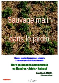 Flore_gourmande_cueillette_plantes_sauvages_comestibles_nord_france_belgique_repas_bio_nature_ecologie_couverture_pdf_SMDLJ
