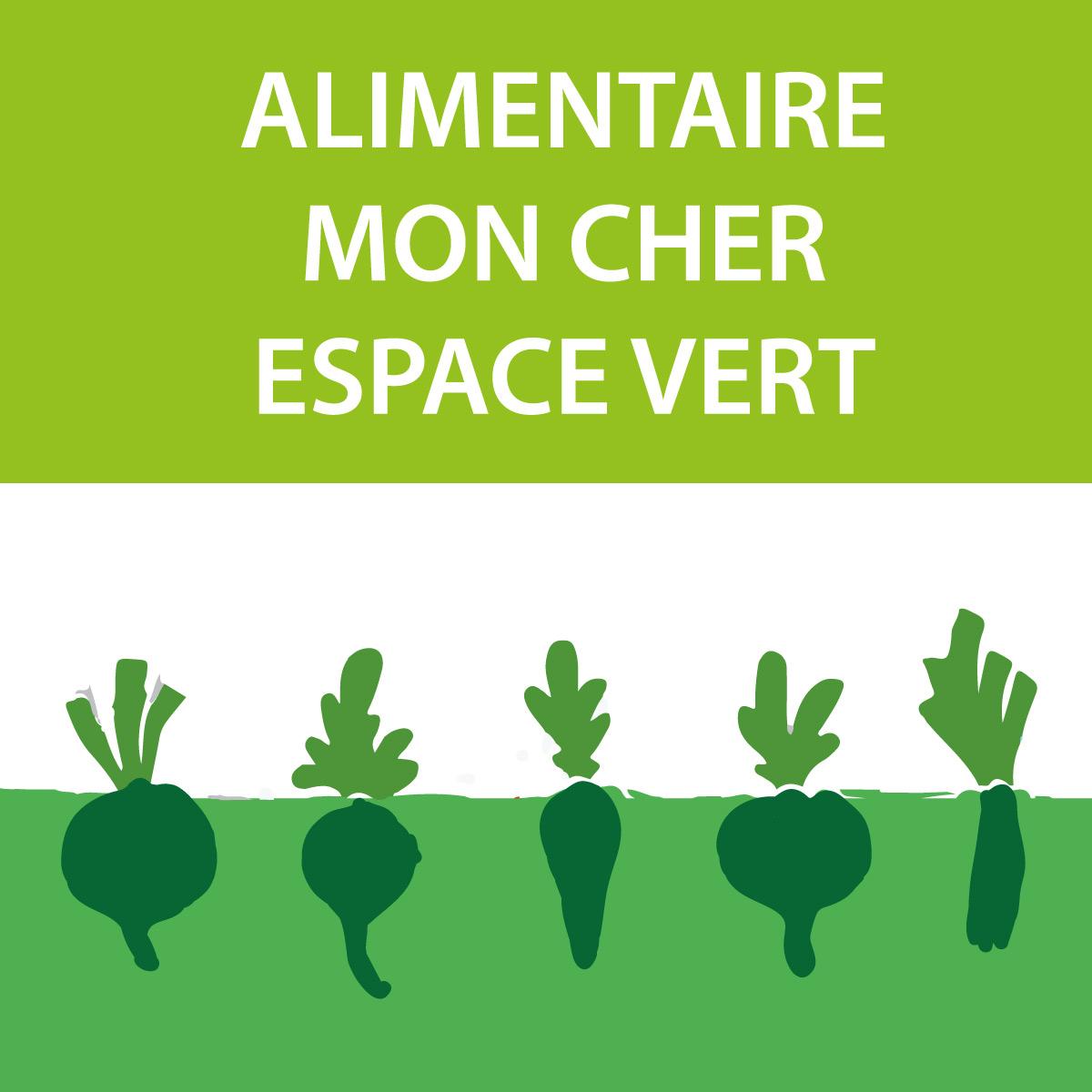 ALIMENTAIRE-MON-CHER-ESPACE-VERT-vignette-pdf-page-activites-flore-gourmande
